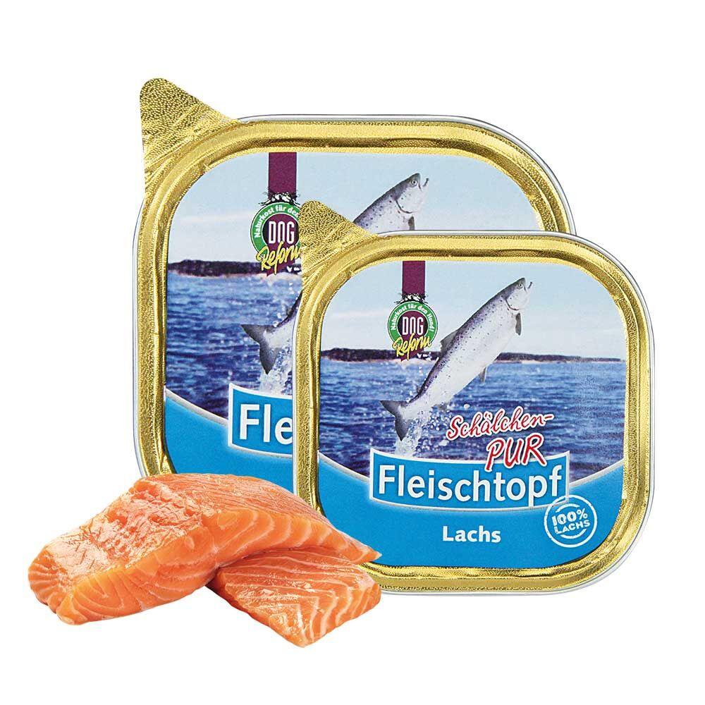 Schecker DOGREFORM Fleischtopf Pur-Schälchen-PUR Lachs, 6 x 100 g