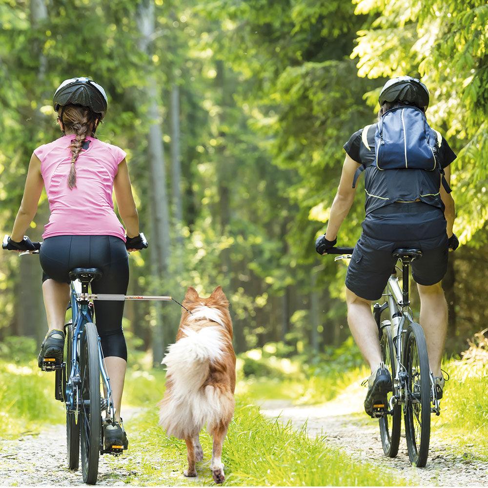 walky dog plus die 3 hand am fahrrad. Black Bedroom Furniture Sets. Home Design Ideas