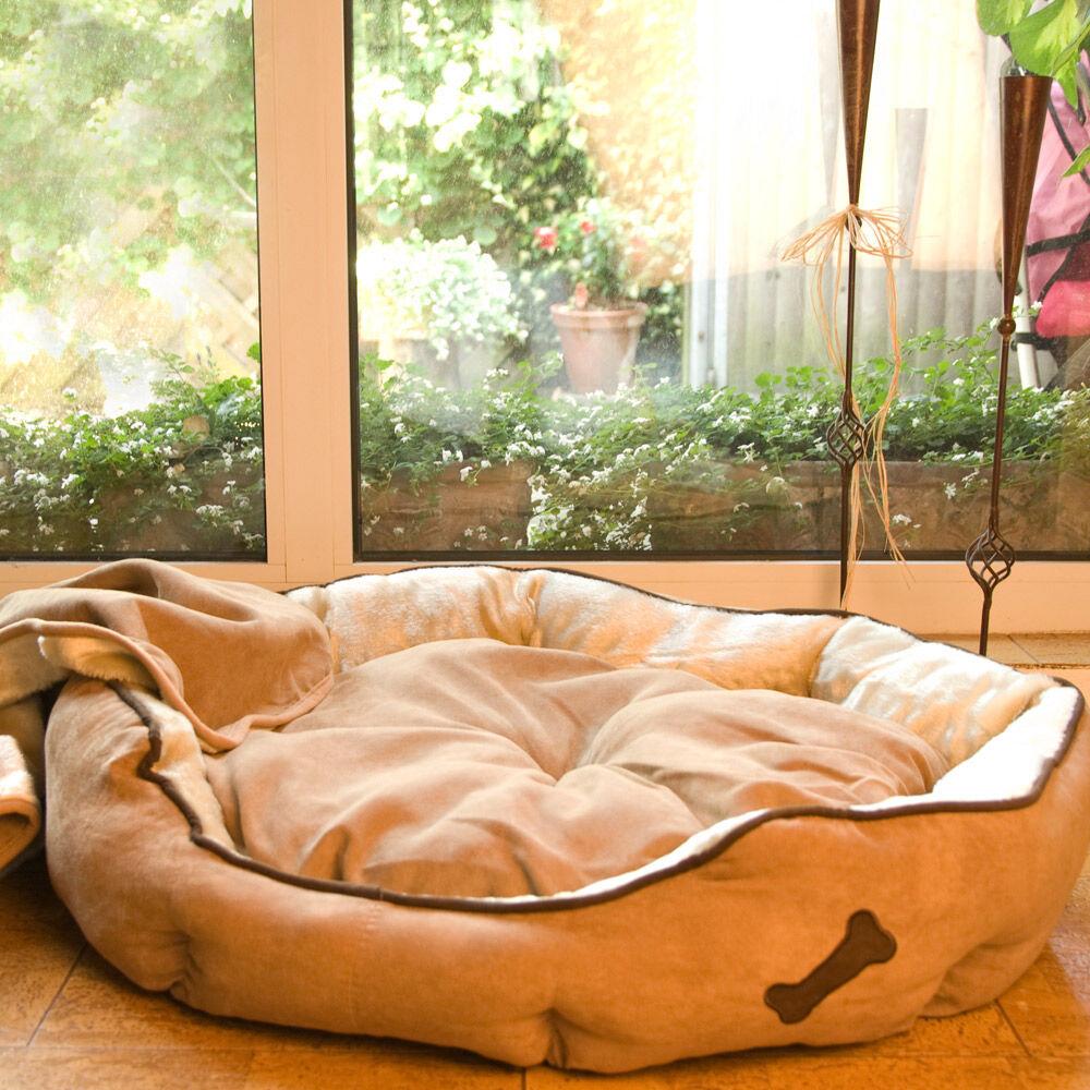 hunde sofa soft line. Black Bedroom Furniture Sets. Home Design Ideas