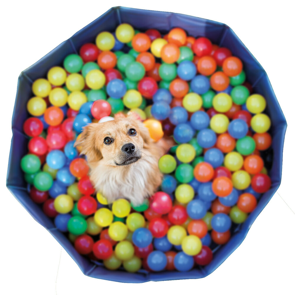 Karlie Bälle für Hunde-Bällebad, 250 Stück, 6 cm Bälle in 5 bunten Farben