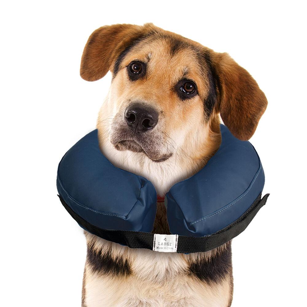 Hunde-Schutzkragen -aufblasbar, Größe: M