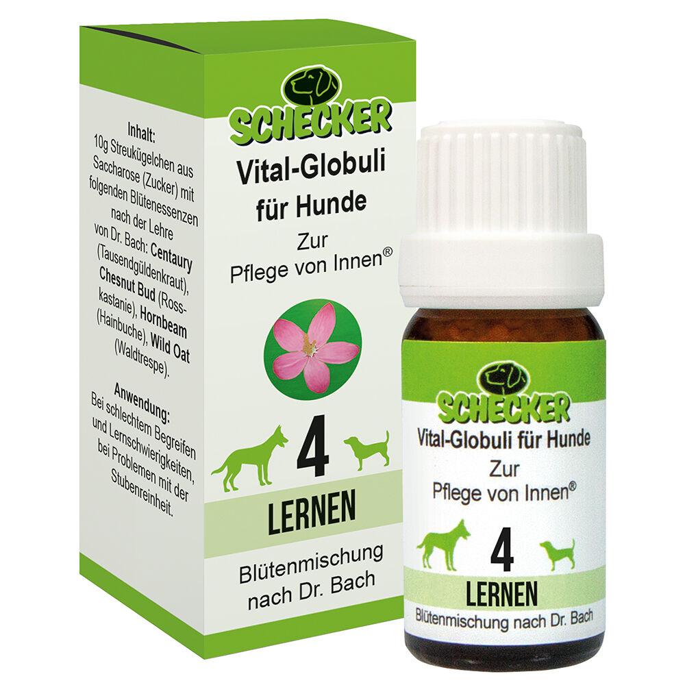 Vital Globuli für Hunde, Blütenmischung - 4. Lernen
