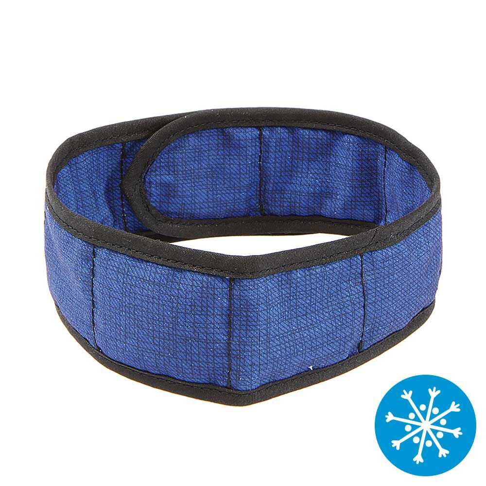 Hunde-Kühlhalsband - blau - . Schecker.de