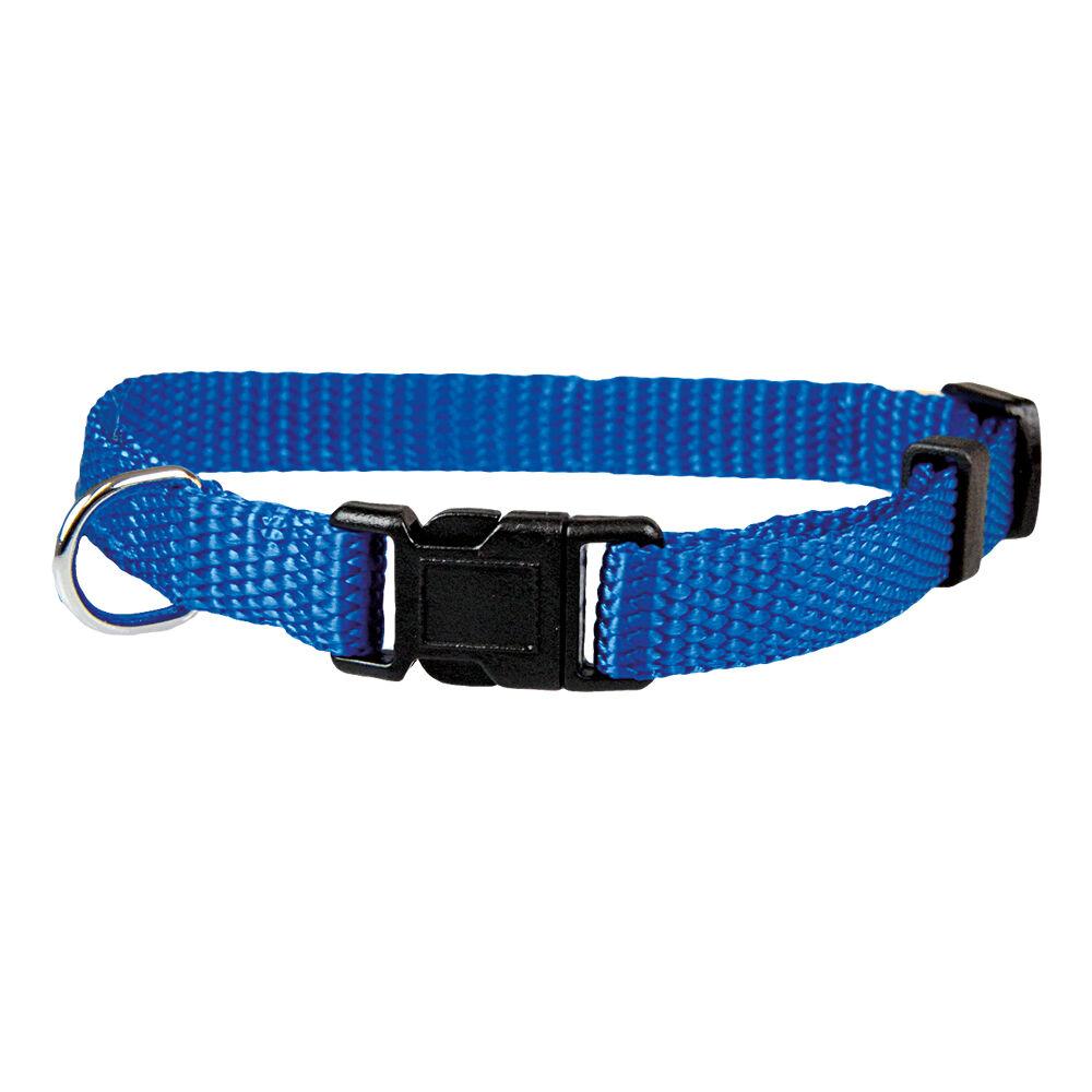 Welpenhalsband, Hundehalsband blau, Halsumfang: 20 - 30 cm, 10 mm breit