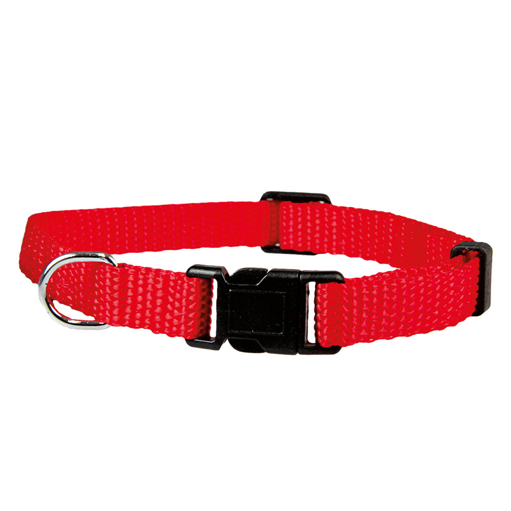 Welpenhalsband, Hundehalsband rot, Halsumfang: 20 - 30 cm, 10 mm breit