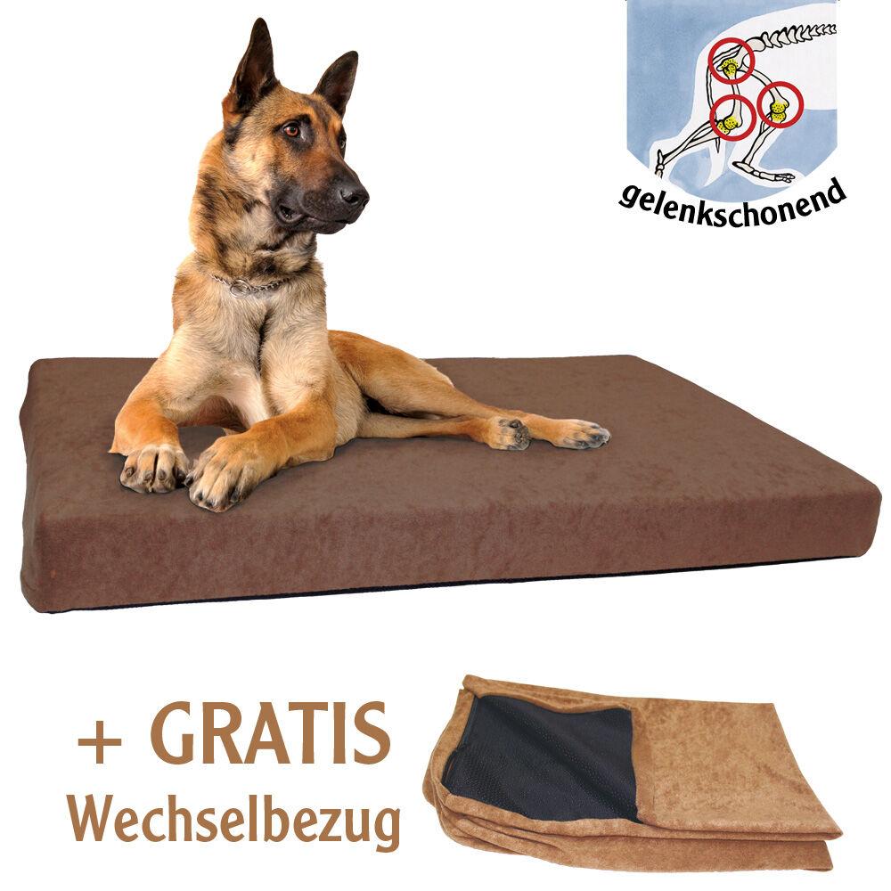 Relativ Hundebett DOG ORTHO, Farbe: Braun kaufen bei Schecker! BE86