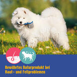 DOGREFORM Wellness, Flüssige Bierhefe