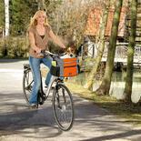 Fahrradtasche - Junior bei Schecker