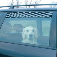 Lüfti-Frischluftgitter-Zweierpkg. Stand.-Gr. nur anthraz. (Hundetransportartikel, Hundegitter, Hundebox, Hundetransportbox)