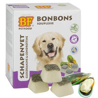 BIOFOOD® Schaffett-Bonbons + Gelenkfit