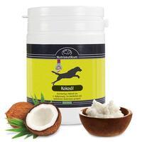 Nutrizeutikum Kokosöl