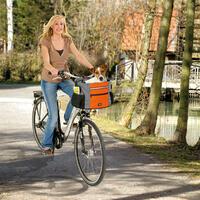 Fahrradtasche - Junior, 38 x 28 x 27 cm, mit Klickfix