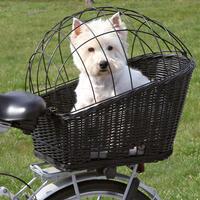 Großer Weiden-Fahrradkorb, inkl. Kissen