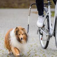 Fahrradhalter - Biker