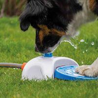 Gartenbrunnen für Hunde