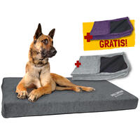 DOG ORTHO Hundebett + GRATIS-Bezug