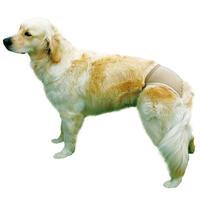 Hundeslip