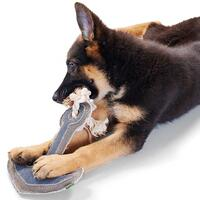 Hundespielzeug Canvas - Maritime Anchor -