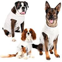 Medi Suit - Schutzanzug für Hunde