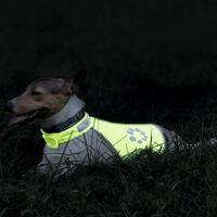Hunde Sicherheitsweste Night Walk