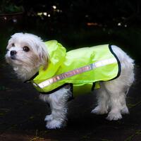 Schipkau Hörlitz Angebote Taschen-Regencape für Hunde