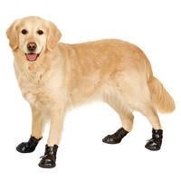 Hunde-Laufschuhe