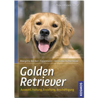 Golden Retriever, Becker/ Thiele-Schneider