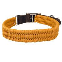 Schecker Parachute Halsband, Farbe: Safran