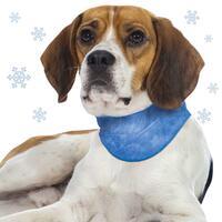 Schecker Kühl-Halstuch für Hunde