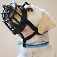 Baskerville Ultra Maulkorb- G.5 - schwarz - (Hundeleine, Hundehalsband, Hundehalstuch)