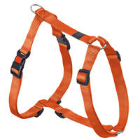 Geschirr Nylon Sportiv S, 35 - 50 cm x 15 mm, orange