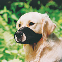 Soft-Maulkorb, Gr. 4 Nasenumpfang: 24 cm (Hundeleine, Hundehalsband, Hundebrustgeschirr, Hundehalstuch)