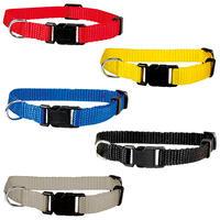 Welpen-Halsbänder: Für einen Halsumfang von 20 - 30 cm, 10 mm breit