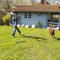 Longier-Set für Hunde