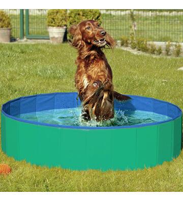 Doggy Pool,80 x 20cm, blau/rot