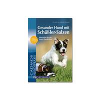 Gesunder Hund mit Schüßler-Salzen