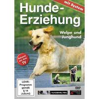Hundeerziehung mit System - Welpe und Junghund