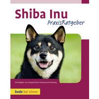 Shiba Inu Andrew de Prisco