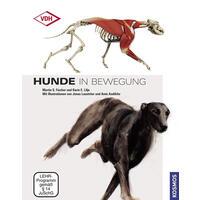 Hunde in Bewegung Martin S.Fischer/Karin E.Lilje (Hundebuch, Hundebücher)