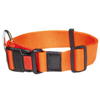 Nylon-Halsband Sportiv, Farbe: Orange