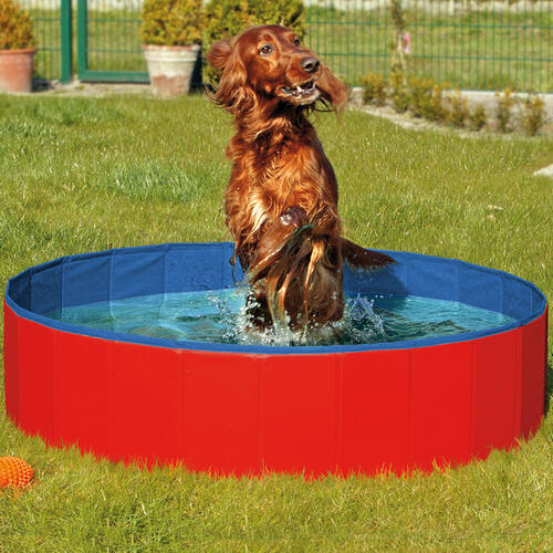 doggy pool swimming pool hunde doggy pool das planschbecken f r den s dbrookmerland. Black Bedroom Furniture Sets. Home Design Ideas